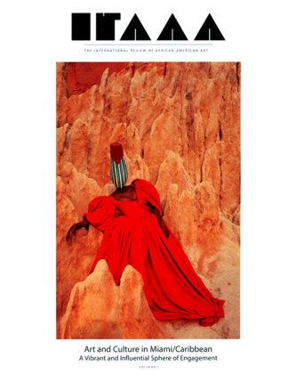 IRAAA 28.2 COVER 72DPI cc